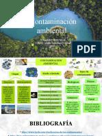 Contaminacion Mapa Conceptual