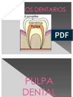 PULPA_DENTAL