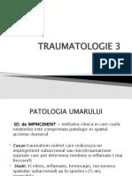 23. Traumatologie 2