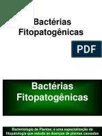 Bactérias fitopatogênicas