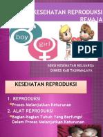 Kesehatan Reproduksi Remaja New