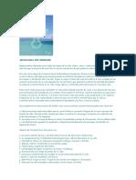 Abundancia Por Designio (Impreso)