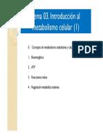 Tema03 -Introducción Al Metabolismo Celular2018-19