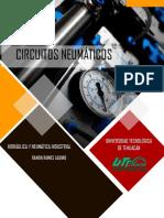 CIRCUITOS NEUMATICO
