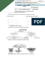 Evaluación 5ta Unidad Ciencia y Ambiente