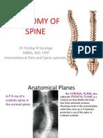 Anatomy of Spine