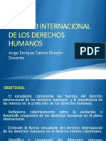 DERECHO INTERNACIONAL DE LOS DERECHOS HUMANOS caqueta 2015
