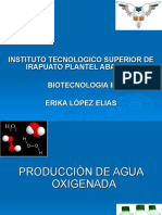 produccion de agua oxigenada -110924151459-phpapp02
