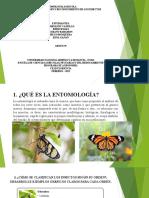 EntomologiaAgricola_Grupo39