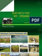 budi-daya-padi-sri-organik.pdf