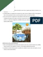 diversidaddelosseresvivos-110711092704-phpapp02