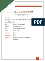 SUFYAN Minhas CV