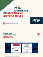 Manual Documentos Pregrado