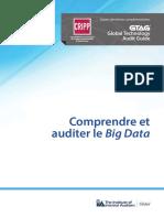 GTAG-Comprendre-et-auditer-le-big-data