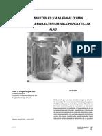 10121989_10 Biocombustibles