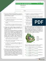 evalaucion_desempeno_2