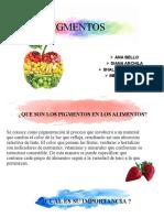 pigmentos 3 (1)