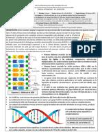 Ciencias Naturales Noveno Primer Periodo Guía 1