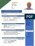 CV Briholle