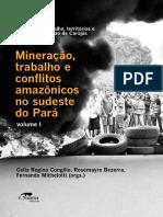 SINDICATO E A LUTA CONTRA A PRECARIZAÇÃO DO TRABALHO NA MINERAÇÃO INDUSTRIAL EM PARAUAPEBAS (PA)
