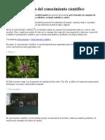 12 características del conocimiento científico