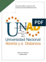FASE 1_ESQUEMA EXPLICATIVO_DAMARIS_PEREZ