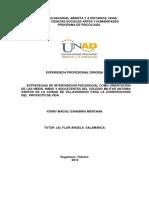 Informe pasantia psiología