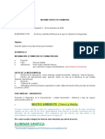 Informe Ejecutivo Sustentacion II Y IV Trimestre 425fa14aba8d788