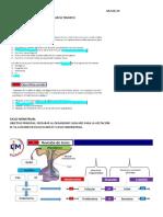 Ginecología Ccm
