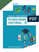 pluraridade cultural 4