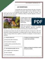 Las-mariposas