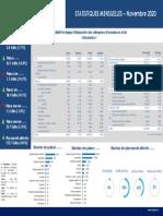 Statistiques Novembre 2020 Fr