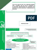Presentación Protocolo-neae Diapositivas-reducidas 22-06-2015
