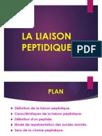 bioch1an_diapo-liaison_peptidque2017