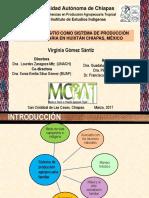 sistemas de produccion de traspatio en Huixtan, Chiapas.