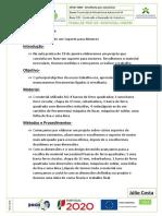 20210125123530-Relatorio_de_18_de_janeiro (1)