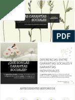 LAS GARANTÍAS SOCIALES