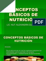 conceptos_basicos_de_nutricion