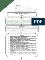 Mapa Conceptual Principios b Sicos de Las BPA .Docx
