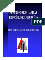 Aulas-12-Eletroforese-Capilar_2S2012