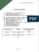 Pdfslide.net Plan de Afacer Gogoserie