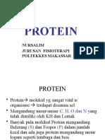 protein fisioterapi