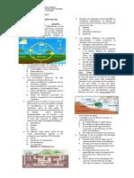 Evaluacion Recuperatoria Ciclos Biogeoquímicos Final