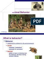 3 Pp Animal Behavior