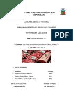 Grupo N° 8_Sistema de clasificacion MSA