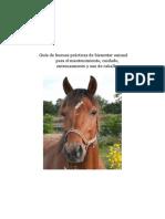 EU-Guia-buenas-practicas-bienestar-animal-para-caballos-20191007