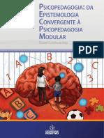 Psicopedagogia da Epistemologia Convergente À Psicopedagogia Modular
