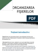 Organizarea-fișierelor Tic- Pipp 2017