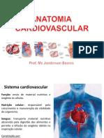1aula-anatomiacardiovascular-170207004323