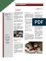 201 Artículo Proyecto Didáctico